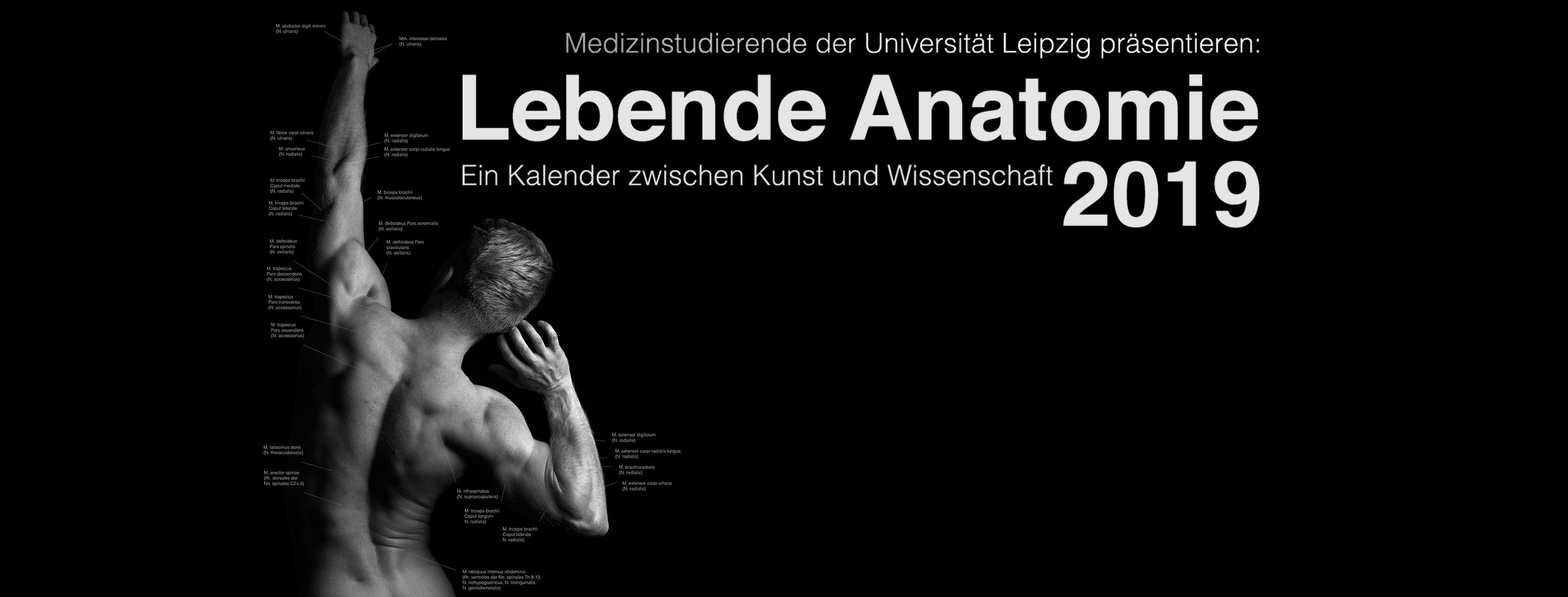 Lebende Anatomie - Ein Kalender zwischen Kunst und Wissenschaft ...
