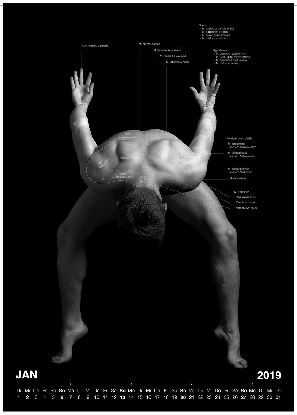 Lebende Anatomie 2019 Kalender Vorschau