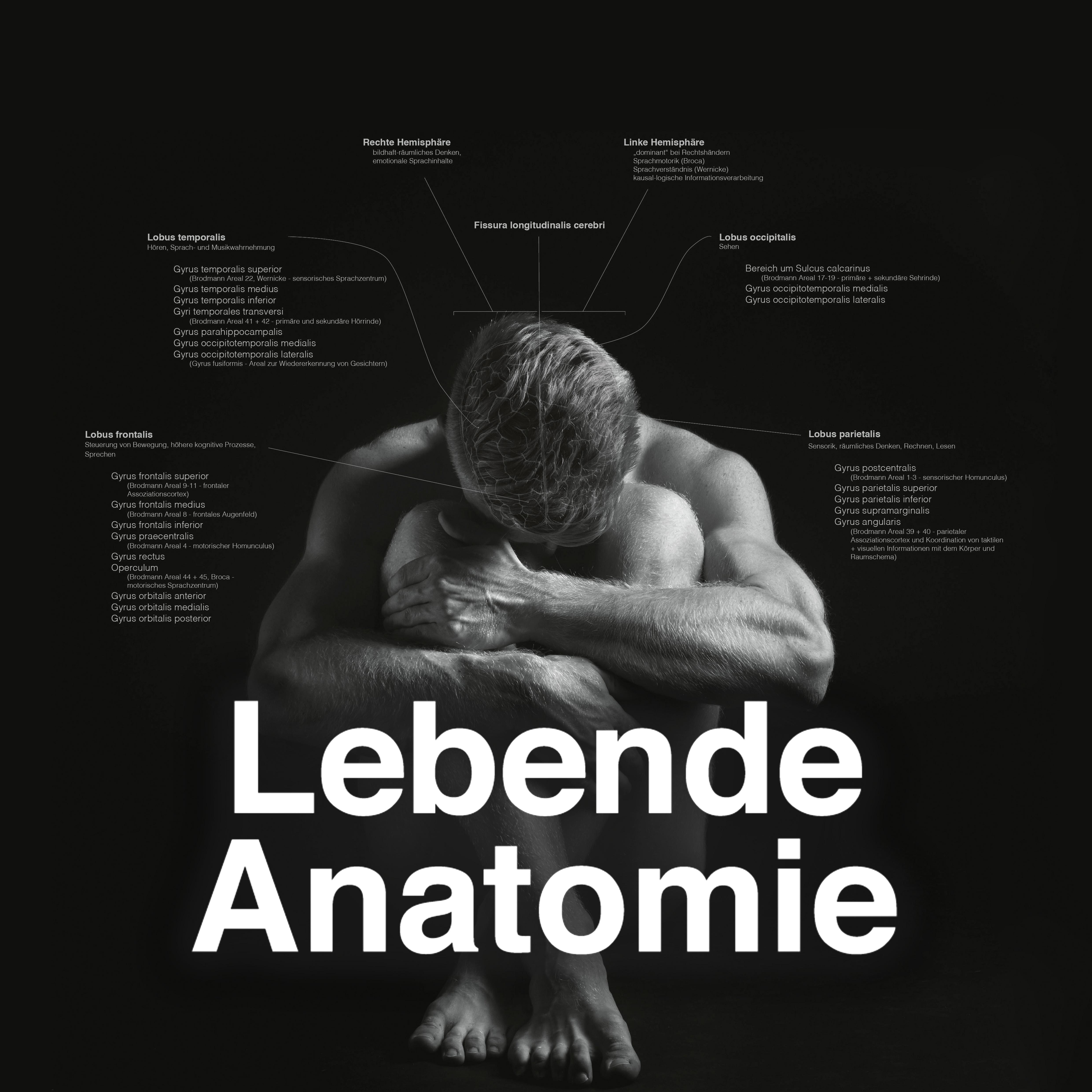 FB Profilbild Lebende Anatomie Kalender 2020 2