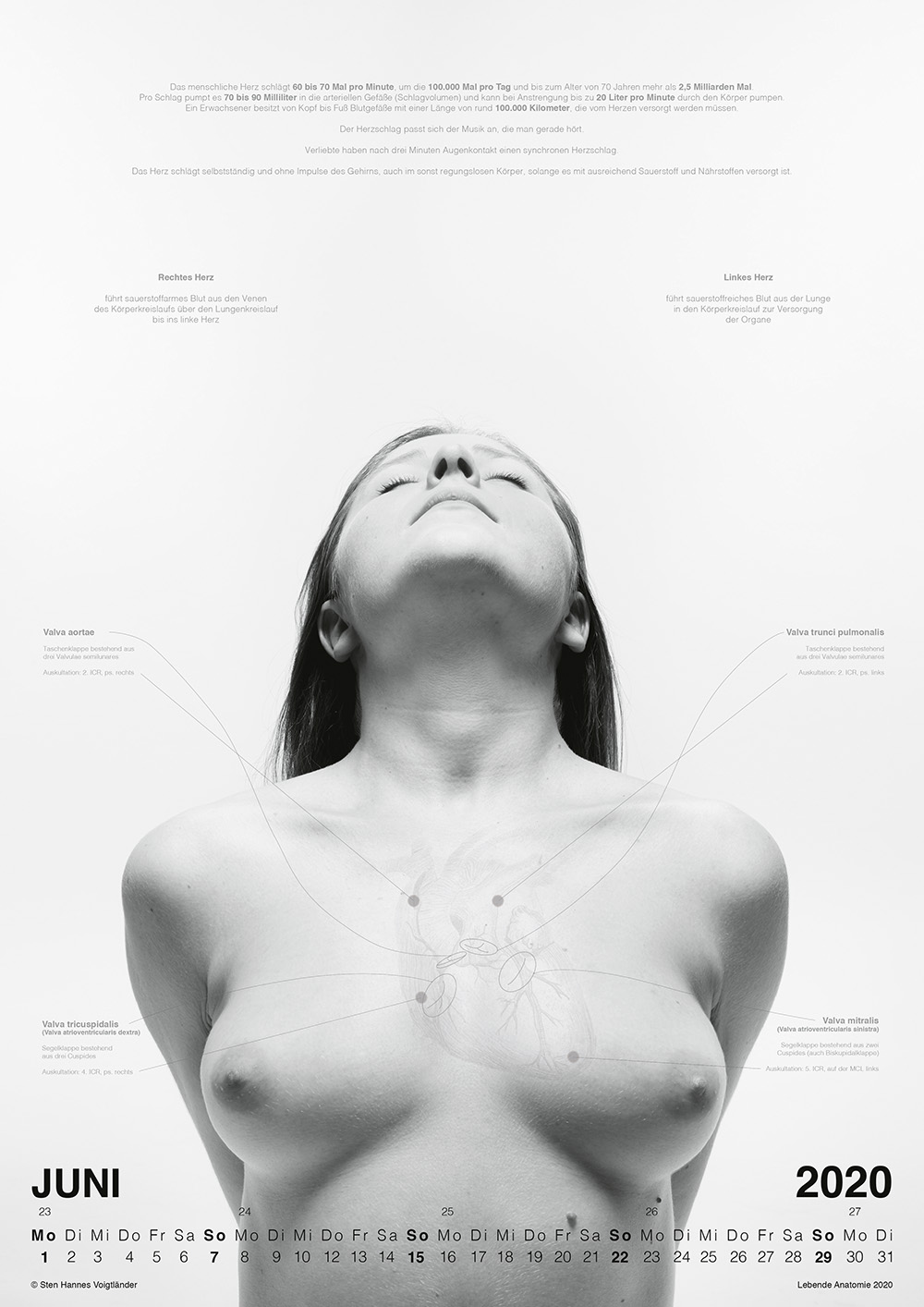 Lebende Anatomie Kalender Vorschau 06