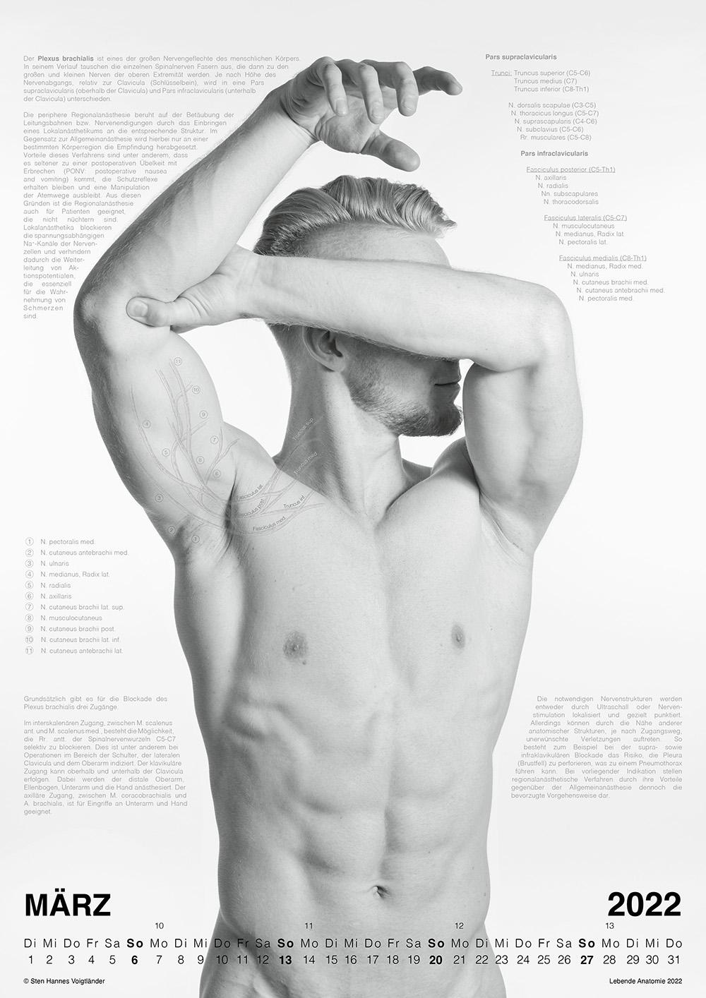 Lebende Anatomie Kalender 2022 VORSCHAU 03