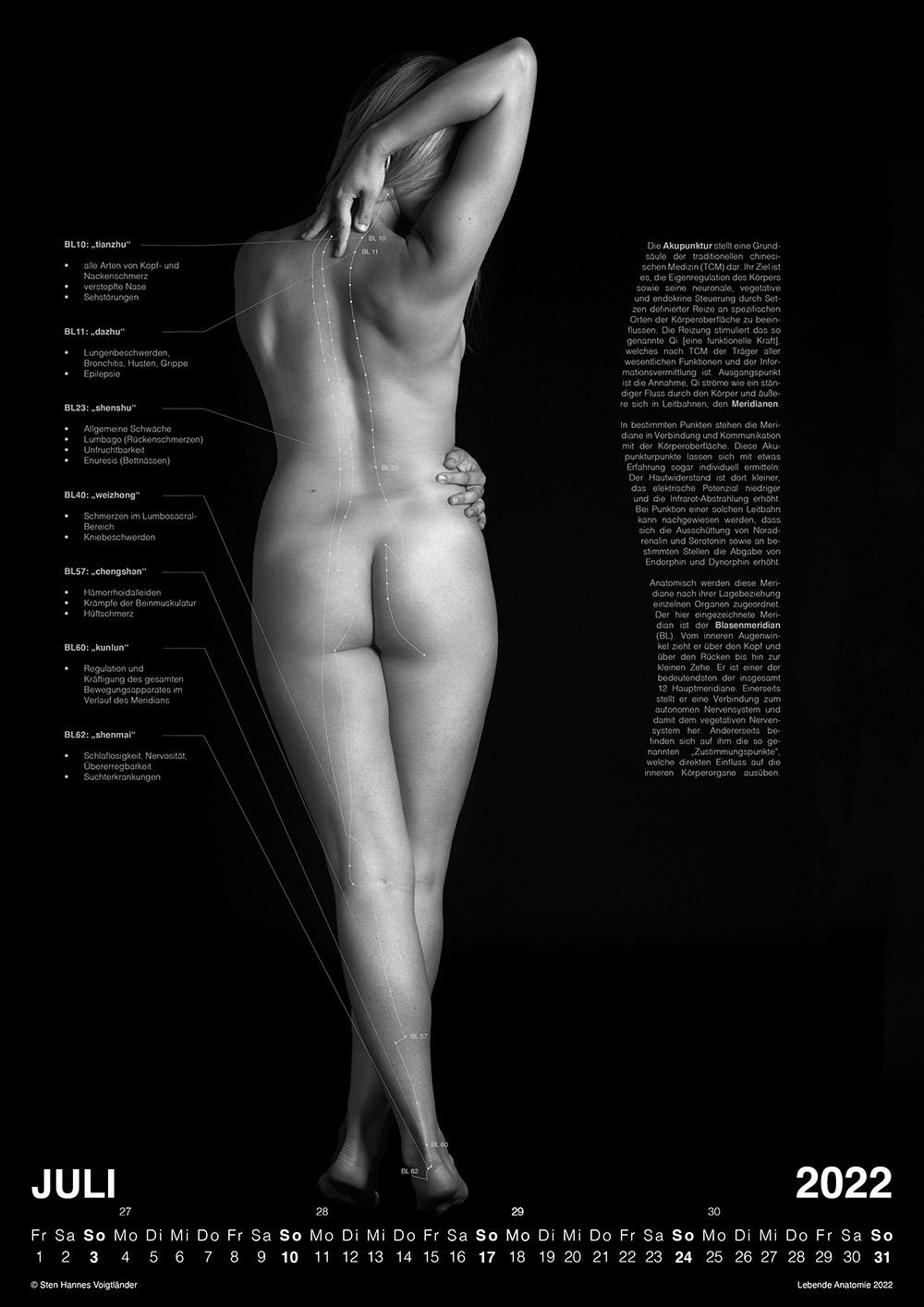 Lebende Anatomie Kalender 2022 VORSCHAU 07