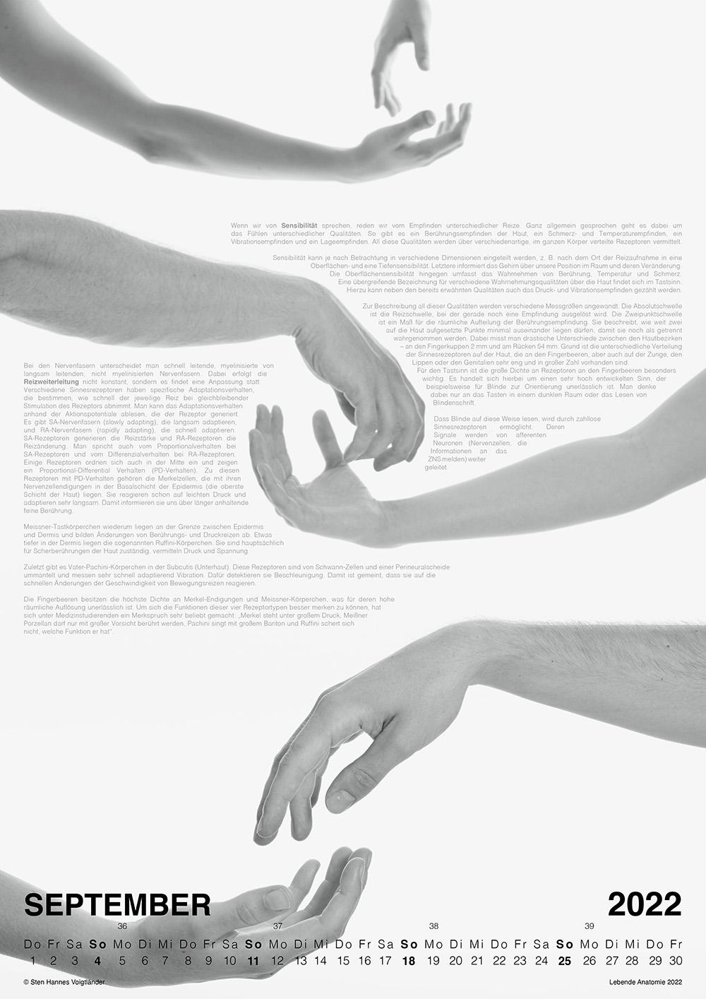 Lebende Anatomie